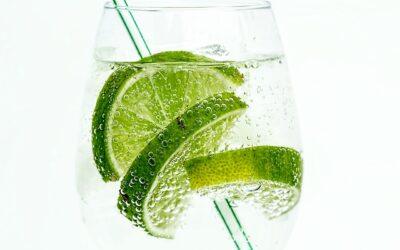 Bredt udvalg af gin glas – find de rigtige glas sådan her!