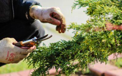 Få styr på tilbehør til skov og havearbejde